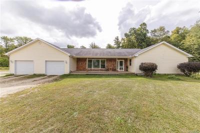 Munith MI Single Family Home For Sale: $209,900