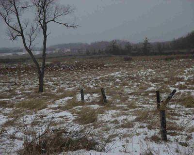 Grass Lake MI Residential Lots & Land For Sale: $60,000