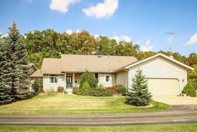 Tecumseh MI Single Family Home For Sale: $459,900
