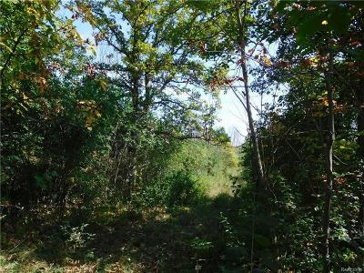 Ypsilanti MI Residential Lots & Land For Sale: $249,900