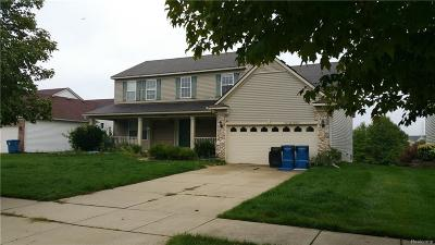 Washtenaw County Single Family Home For Sale: 4622 Hickory Pointe Blvd