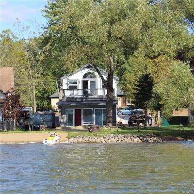 Whitmore Lake MI Single Family Home For Sale: $449,500