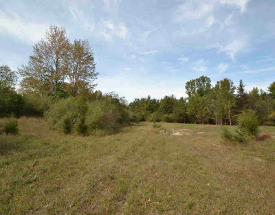 Ann Arbor MI Residential Lots & Land For Sale: $249,900