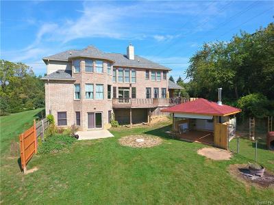 Washtenaw County Single Family Home For Sale: 5378 Morgan Rd
