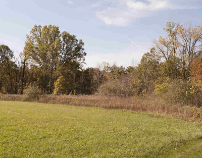 Dexter MI Residential Lots & Land For Sale: $499,000