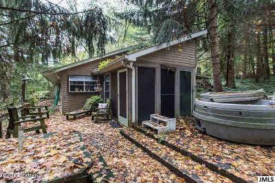 Hanover MI Single Family Home For Sale: $229,900