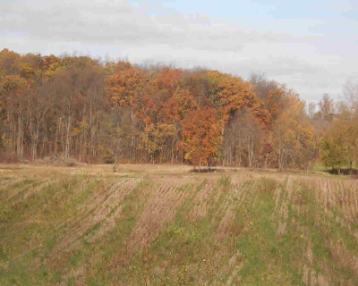 Manchester MI Residential Lots & Land For Sale: $105,000