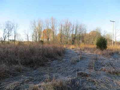 Clinton MI Residential Lots & Land For Sale: $55,000