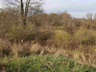 Grass Lake MI Residential Lots & Land For Sale: $375,000