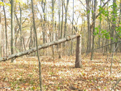 Jackson County Residential Lots & Land For Sale: Valley Park Drive
