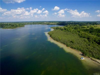 Cement City MI Residential Lots & Land For Sale: $792,000