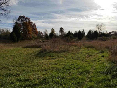 Grass Lake MI Residential Lots & Land For Sale: $190,000