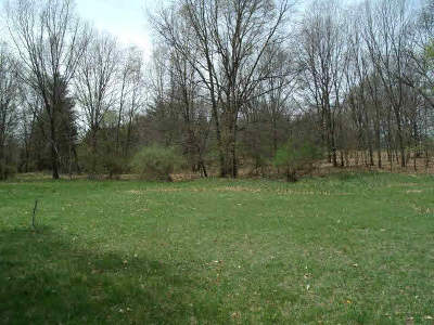Manchester MI Residential Lots & Land For Sale: $159,900