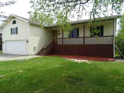 Onsted MI Single Family Home For Sale: $194,900