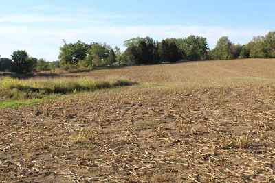 Jackson MI Residential Lots & Land For Sale: $160,000
