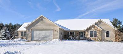 Tipton MI Single Family Home For Sale: $369,900