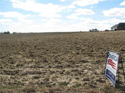 Clinton MI Residential Lots & Land For Sale: $75,000