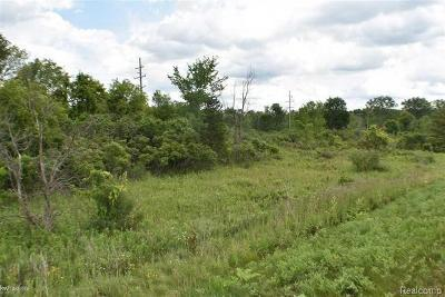 Ann Arbor MI Residential Lots & Land For Sale: $350,000