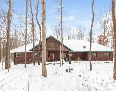 Washtenaw County Single Family Home For Sale: 7500 Webster Church