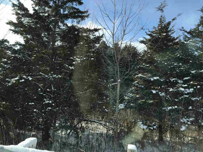 Osseo MI Residential Lots & Land For Sale: $145,000