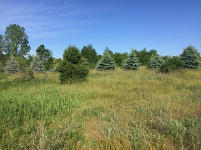 Manchester MI Residential Lots & Land For Sale: $80,000