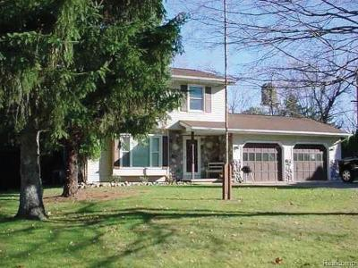 Eaton Rapids Single Family Home For Sale: 113 Kilkelly St