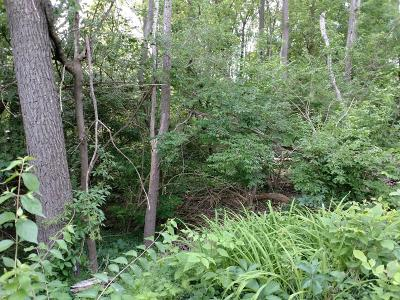 Ann Arbor Residential Lots & Land For Sale: 2751 Washtenaw Ave