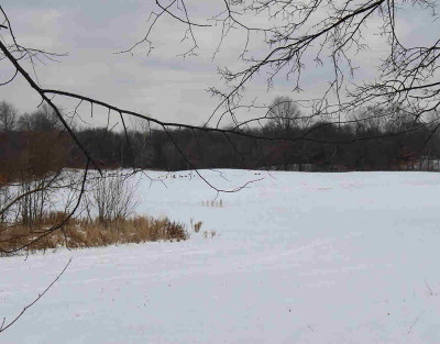 Jackson MI Residential Lots & Land For Sale: $99,900