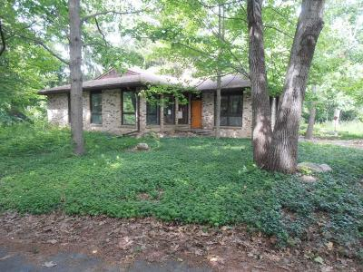 Canton Single Family Home Contingent - Financing: 7435 N Ridge Rd