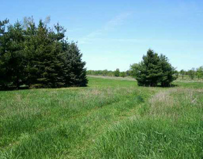 Grass Lake MI Residential Lots & Land For Sale: $600,000