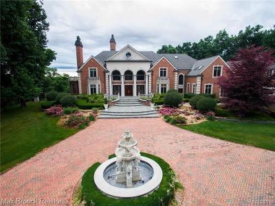 Northville Single Family Home For Sale: 590 Dubuar St