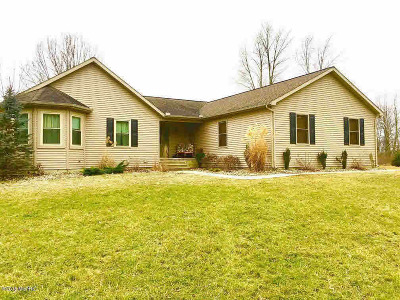 Allen MI Single Family Home For Sale: $239,900