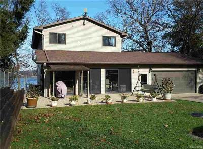 Cement City MI Single Family Home For Sale: $350,000