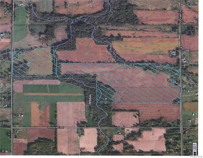 Addison MI Residential Lots & Land For Sale: $800,000