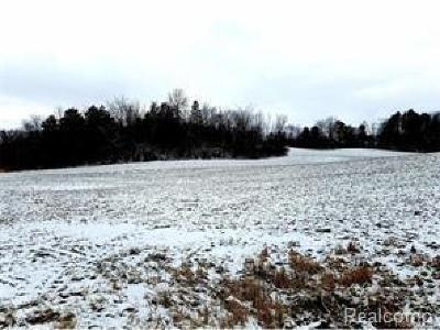 Manchester MI Residential Lots & Land For Sale: $64,900
