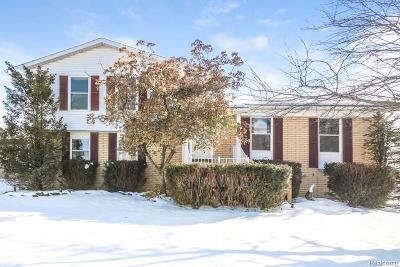 Single Family Home For Sale: 42006 Merrimac Cir