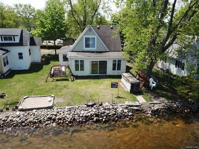 Pinckney MI Single Family Home For Sale: $379,900