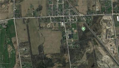 Salem MI Residential Lots & Land For Sale: $385,000