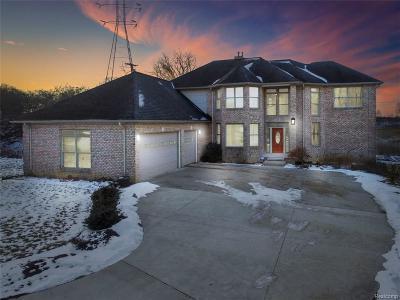Washtenaw County Single Family Home For Sale: 5500 Morgan Rd