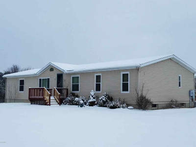 Hillsdale County Single Family Home For Sale: 3990 Mechanic Rd