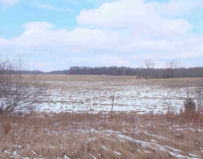Clinton MI Residential Lots & Land For Sale: $279,900