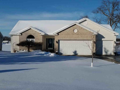 Hillsdale MI Single Family Home For Sale: $299,900