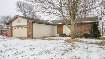 Ypsilanti MI Single Family Home For Sale: $375,000