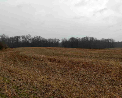 Chelsea MI Residential Lots & Land For Sale: $125,000