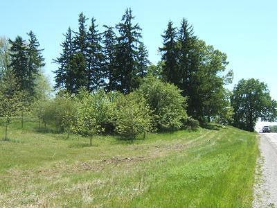 Ann Arbor Residential Lots & Land For Sale: 5801 S State Rd