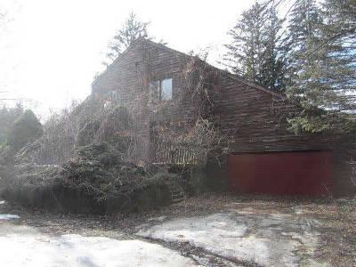 Ann Arbor Single Family Home For Sale: 98 Valhalla
