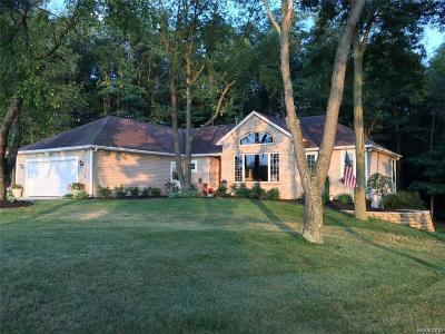 Adrian MI Single Family Home For Sale: $334,900
