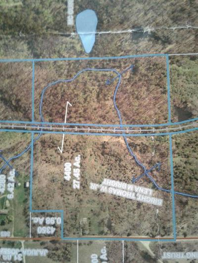 Addison MI Residential Lots & Land For Sale: $91,000