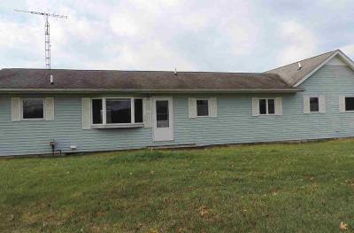 Grass Lake MI Single Family Home For Sale: $275,000