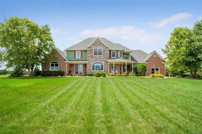 Stockbridge Single Family Home For Sale: 2444 Kane Rd